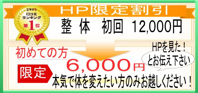 整体 ホームページ限定割引 初めての方は、初回12000円のところ「ホームページを見た」と話していただくと6000円で受けられます。