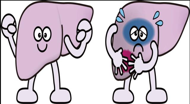 「肝臓病」の画像です。