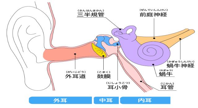 「耳のケア方法」についての説明画像です。