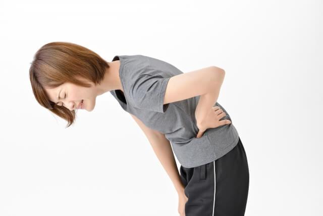 「腰痛の説明」画像です。